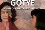 Somebody-That-I-Used-To-Know-Gotye3