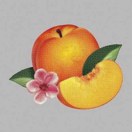 Phoenix-Bankrupt-cd-cover