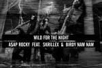 wild-for-the-night-asap-skrillex-birdy-nam-nam