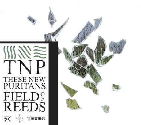 these-new-puritans-field-of-reeds-cd-cover