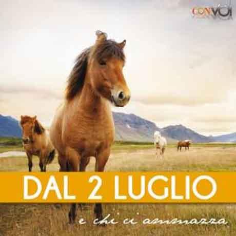 Claudio-Baglioni-E-Chi-Ci-Ammazza-artwork