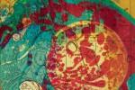 almanacco-del-giorno-prima-cd-cover-dente