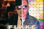 flake-le-due-meta