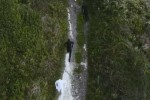 Walking-With-Elephants-videoclip-ten-walls