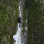 Ten Walls – Walking With Elephants: audio e video ufficiale