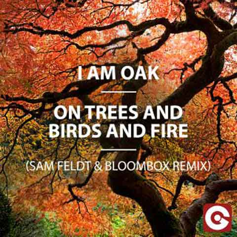 i_am_oak_artwork_on_trees_and_birds_and_fire