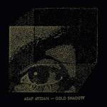 Gold Shadows nuovo disco di Asaf Avidan: copertina e tracce del CD