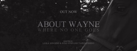 Where-No-One-Goes-videoclip-About-Wayne