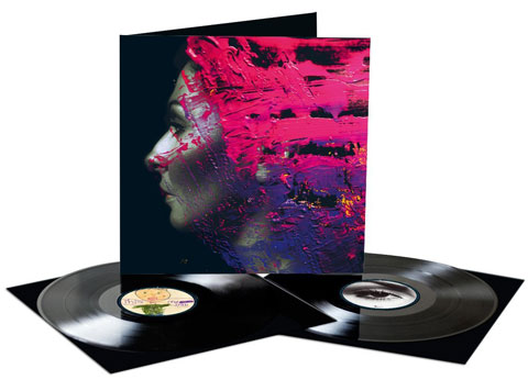 Hand-Cannot-Erase-contenuto-vinile-2-LP