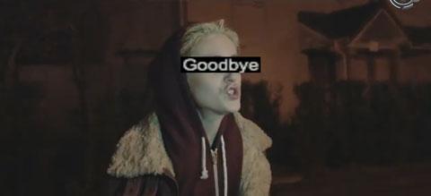 goodbye-video-feder