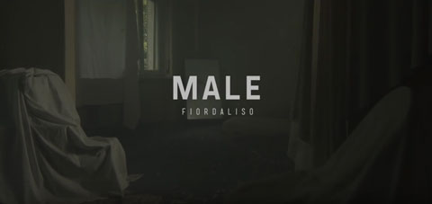 male-video-fiordaliso
