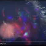 Immanuel Casto – DiscoDildo: video ufficiale + testo