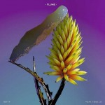 Flume feat. Tove Lo, Say It: testo, traduzione e audio + video