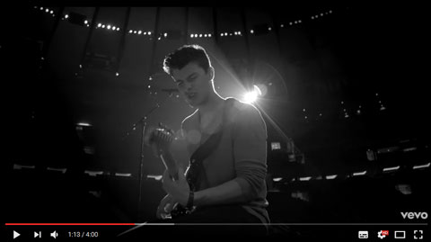 ruin-video-shawn-mendes