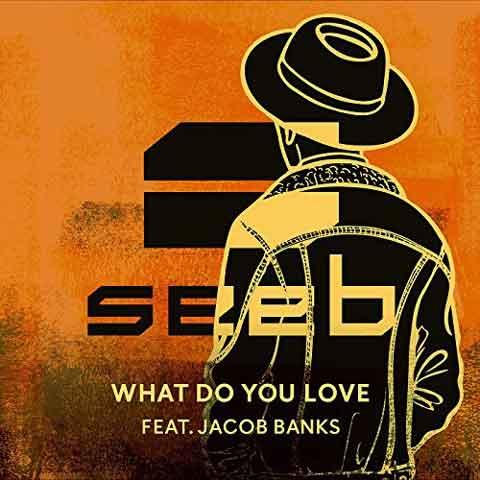 copertina-singolo-what-do-you-love-seeb