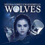 Selena Gomez & Marshmello: ascolta il nuovo singolo Wolves + testo e traduzione + video