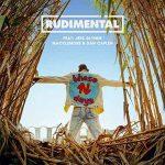 """Rudimental: ascolta il nuovo singolo """"These Days"""" feat. Jess Glynne, Macklemore & Dan Caplen disponibile anche nel remix dei Camelphat (+ testo e traduzione) + video"""