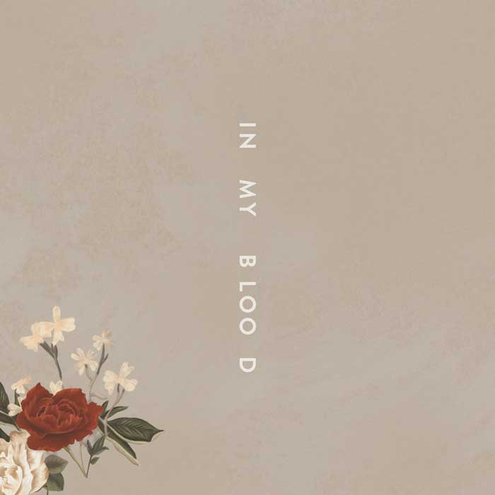 copertina-In-My-Blood-Shawn-Mendes