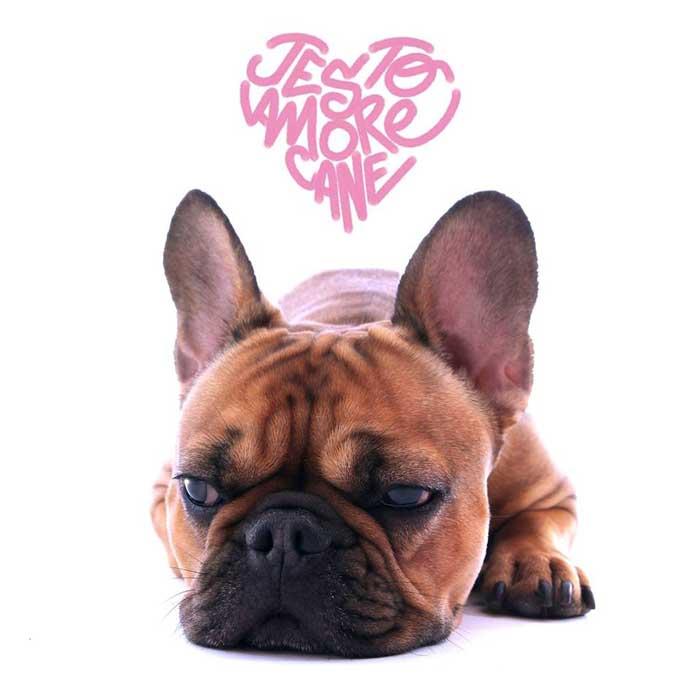 copertina-amore-cane-jesto