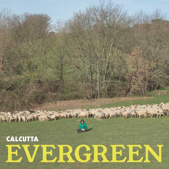 copertina-album-calcutta-Evergreen