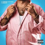 """Il Pagante e il nuovo singolo """"Il terrone va di moda"""": audio e testo"""