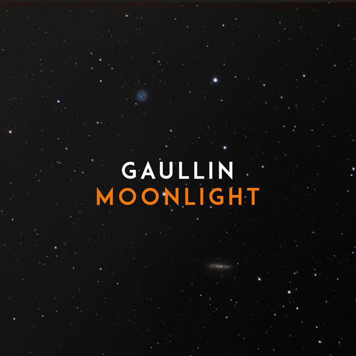 la copertina di Moonlight