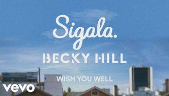 guarda il lyric video di wish you well