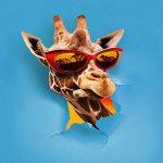 copertina canzone jambo by takagi e ketra
