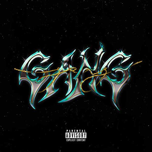 copertina canzone gang