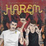 copertina canzone Harem