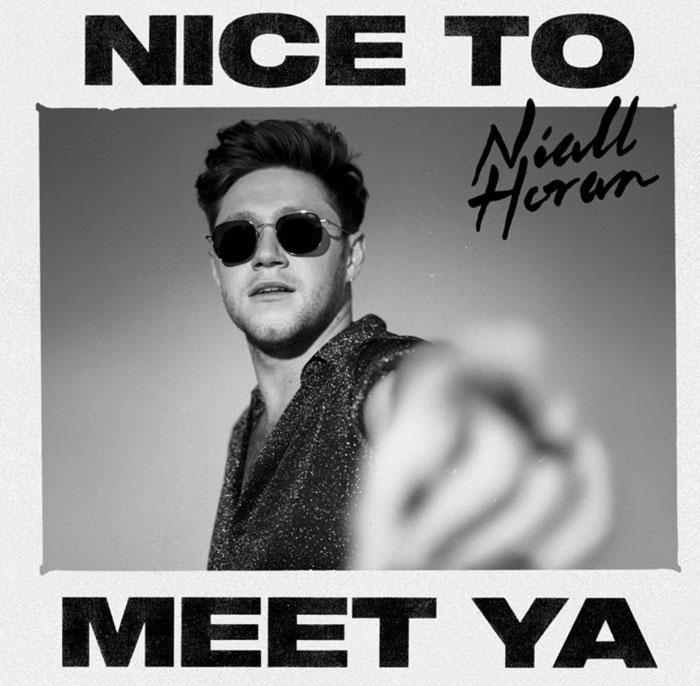copertina canzone Nice To Meet Ya