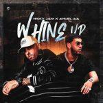 copertina canzone Whine Up