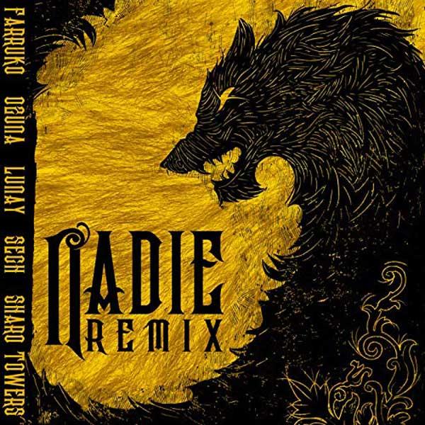 copertina canzone nadie remix