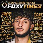 copertina album Foxy Times