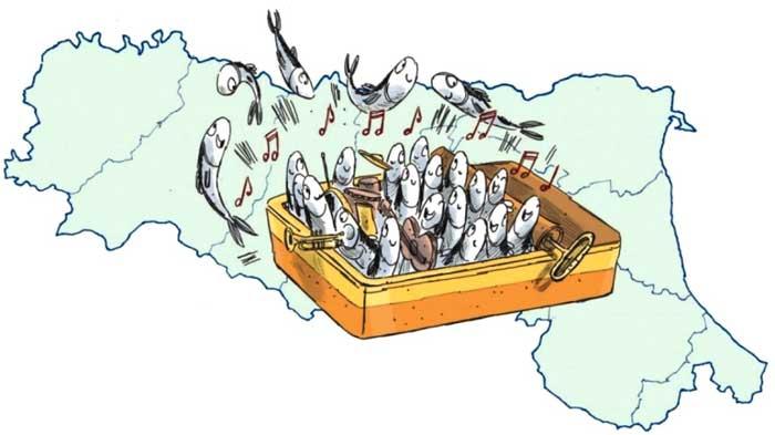 sardine che cantano