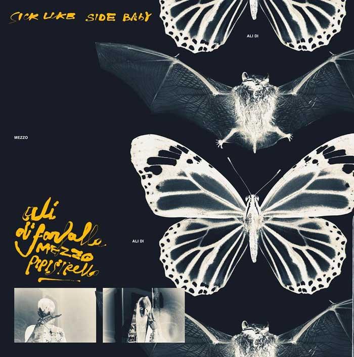 copertina canzone Ali di farfalla mezzo pipistrello
