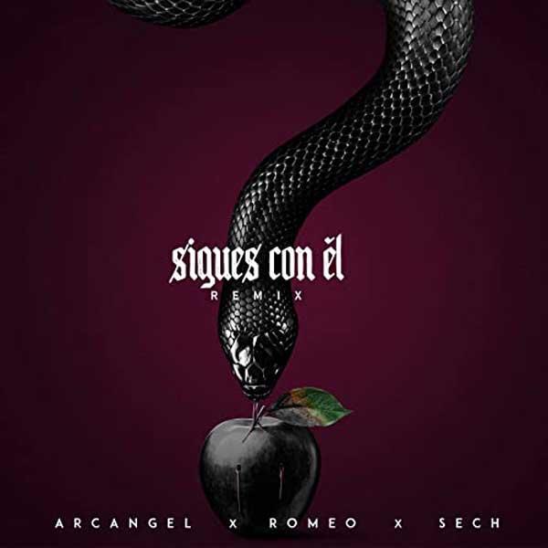 copertina brano sigues con el remix