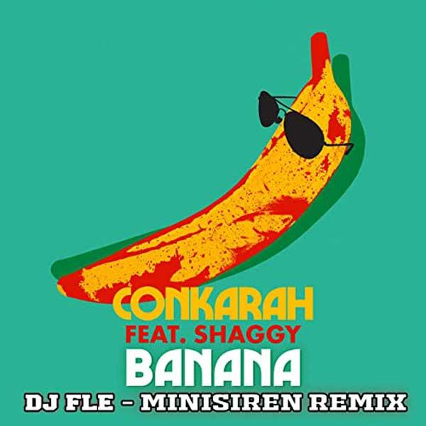 copertina canzone banana remix