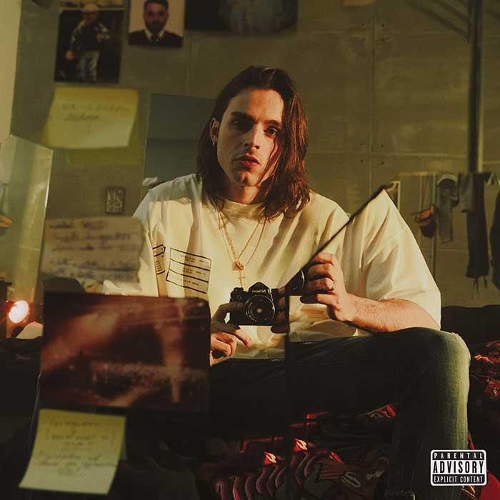 copertina album gemelli