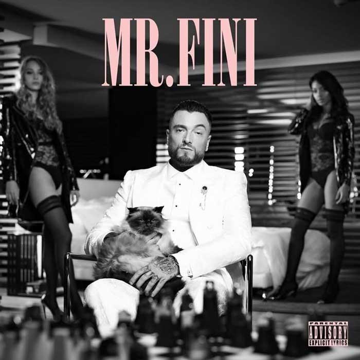 copertina album mr fini