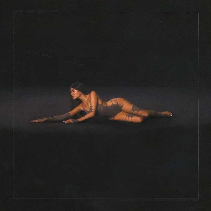 copertina album Life Support