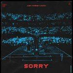copertina brano sorry by alan walker