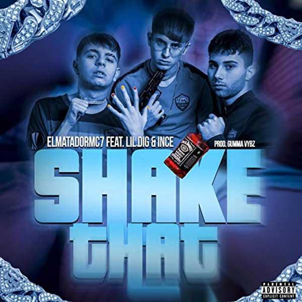 copertina brano shake that di elmatadormc